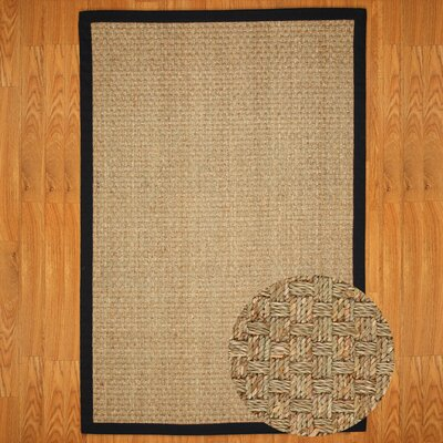 Alland Sisal Black Area Rug Rug Size: Rectangle 6' x 9'