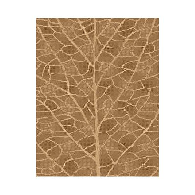 Brown/Natural Indoor/Outdoor Reversible Area Rug Rug Size: Rectangle 37 x 57