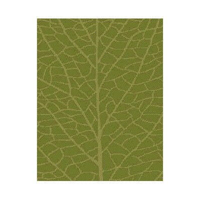 Green/Natural Indoor/Outdoor Area Rug Rug Size: Rectangle 37 x 57