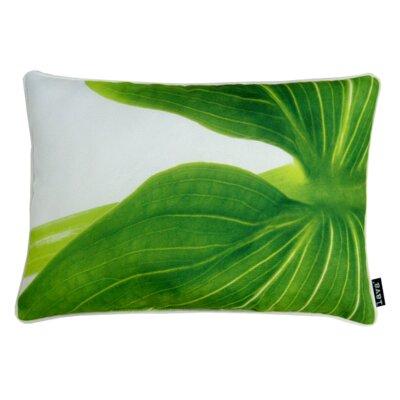 Arum Indoor/Outdoor Lumbar Pillow