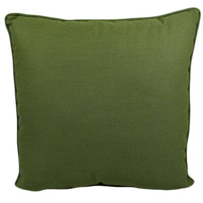 Ravinia Outdoor Throw Pillow Color: Cilantro
