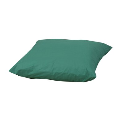 Friedensburg Floor Pillow Color: Green