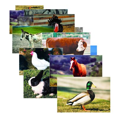 Farm Animal Poster Set SLM152