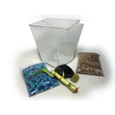 Nutmeg Aquarium Kit