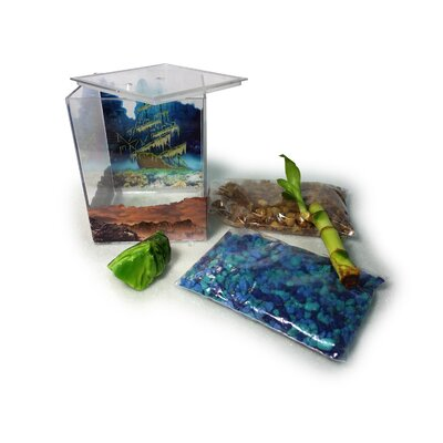 Oakely Aquarium Kit