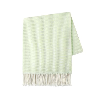 Marne Throw Color: Mint Green
