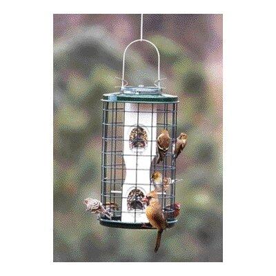 Avian Series Caged Tube Bird Feeder AV5M
