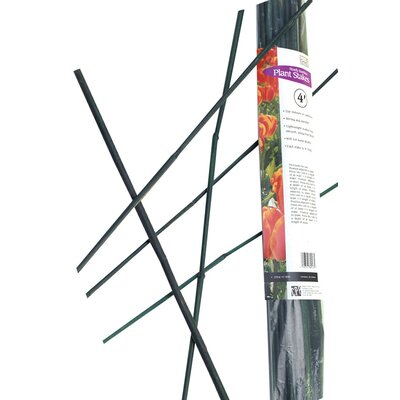 Bamboo Stakes BB4