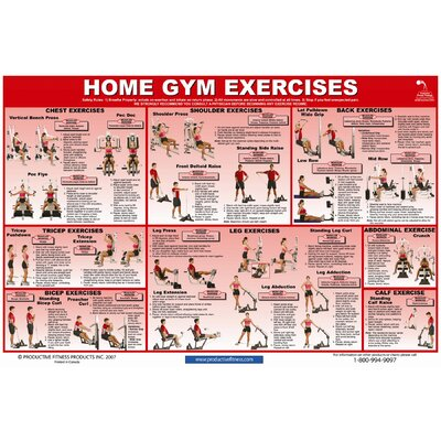 productive fitness publishing home gym exercises poster