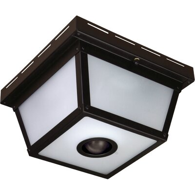 360 Degree Motion Activated 4-Light Flush Mount Finish: Black