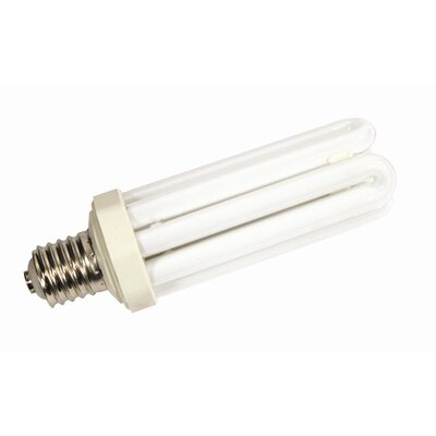 65W Compact Fluorescent Replacement Light Bulb