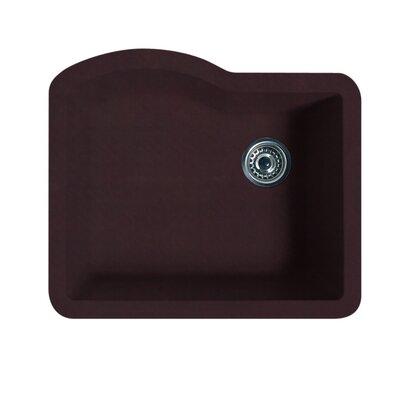 Swanstone Classics 24 x 21 Single Bowl Kitchen Sink Finish: Espresso
