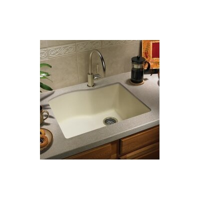 24 x 21 Undermount Kitchen Sink Finish: Bianca