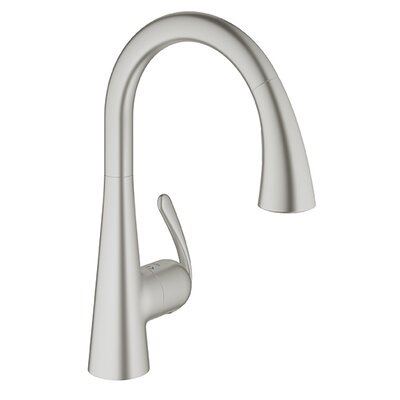 Ladylux Single Handle Single Hole Kitchen Faucet Finish: Supersteel