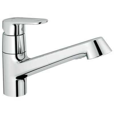 Europlus Single Handle Single Hole Standard Kitchen Faucet with Water Care Finish: Chrome, Flow Rate: 1.5