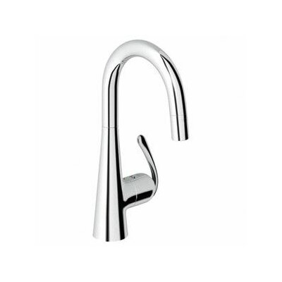 Ladylux3 Single Handle Single Hole Bar Faucet with Dual Spray Pull Down Finish: Chrome
