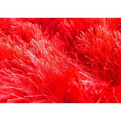 Melange Red Rug Rug Size: 53 x 710