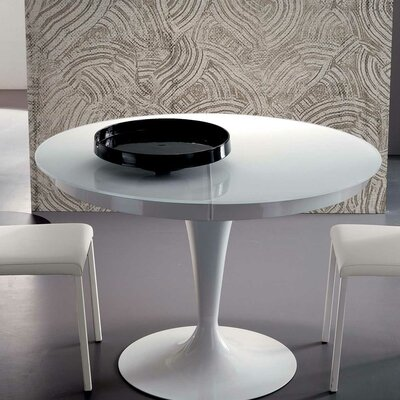 Elise Extendable Dining Table Finish: White