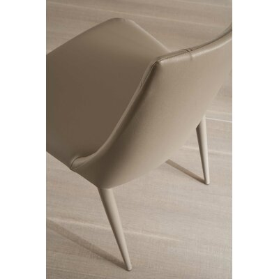 Apollo Side Chair Upholstery: Light Gray/Beige