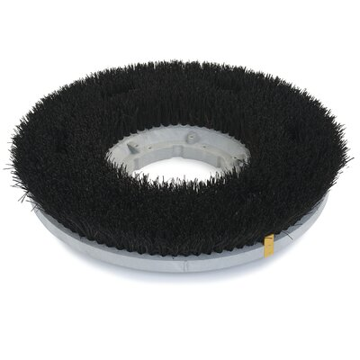 Colortech  Bassine Scrub Brush Size: 12