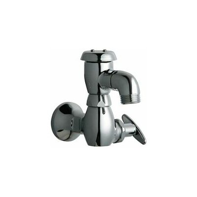 Manual Wall Mount Service Sink Faucet with Vacuum Breaker Spout and Loose Key Handle