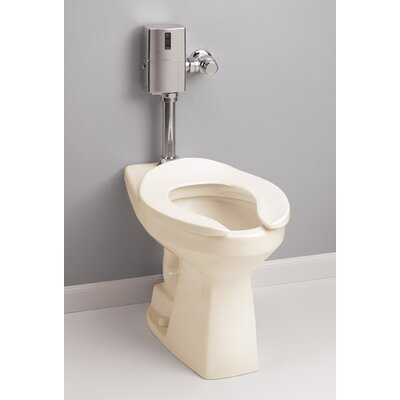 High Efficiency Commercial ADA Floor Mounted Flushometer 1.28 GPF Elongated One-Piece Toilet Toilet Finish: Bone