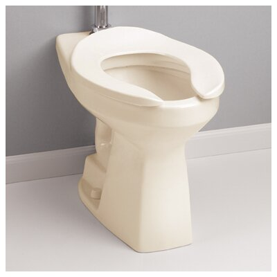 High Efficiency Commercial Floor Mounted Flushometer 1.28 GPF Elongated Toilet Bowl Toilet Finish: Sedona Beige