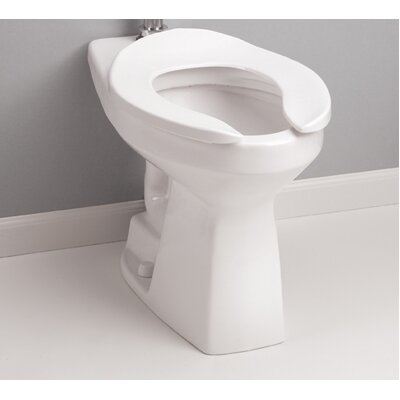 High Efficiency Commercial ADA Floor Mounted Flushometer 1.28 GPF Elongated One-Piece Toilet Toilet Finish: Cotton (Gloss)