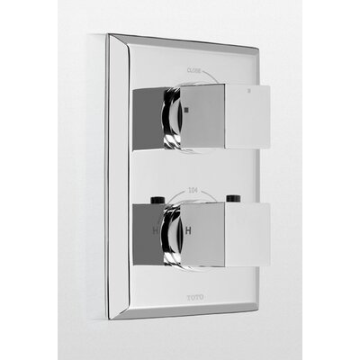 Lloyd Thermostatic Mixing Valve Trim with Single Volume Control Trim Finish: Polished Nickel