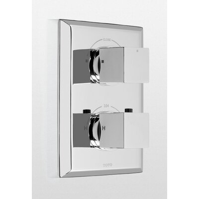 Lloyd Thermostatic Mixing Valve Trim with Dual Volume Control Trim Finish: Polished Nickel