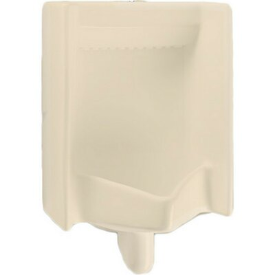 Back Spud Commercial Washout Urinal Finish: Bone