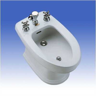 Carrollton Vertical Spray Floor Mount Bidet Finish: Ebony