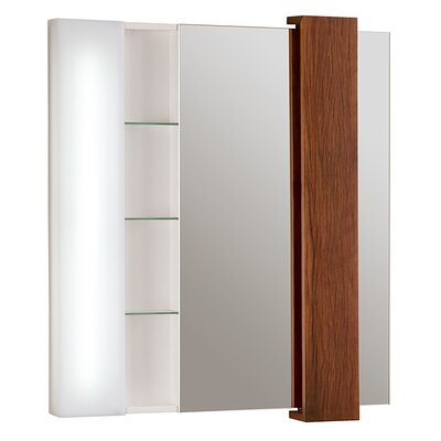 Malena Falls 33 x 38 Surface Mount Medicine Cabinet Finish: Ship Wood