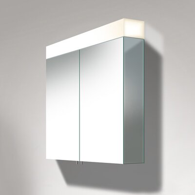 Delos 29.88 x 47.25 Surface Mount Medicine Cabinet with LED Lighting