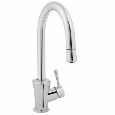 Gooseneck Two Handle Kitchen Faucet Pvd Finish