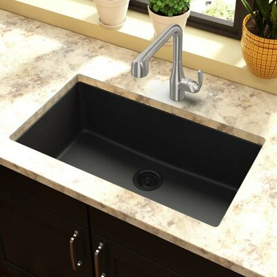 Classic 33 x 18.4 Single Bowl Kitchen Sink Finish: Black