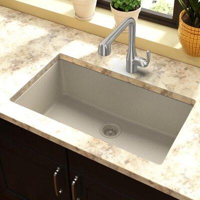 Quartz Classic 30.25 x 16.3 Undermount Kitchen Sink Finish: Bisque