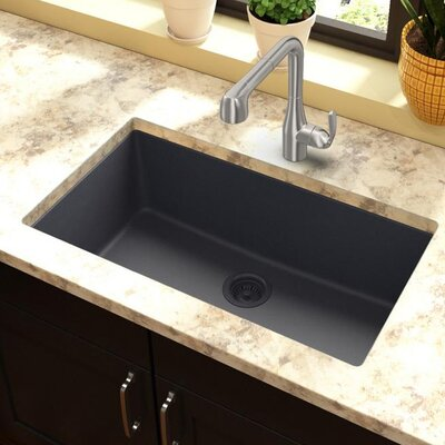 Quartz Classic 30.25 x 16.3 Undermount Kitchen Sink Finish: Dusk Gray