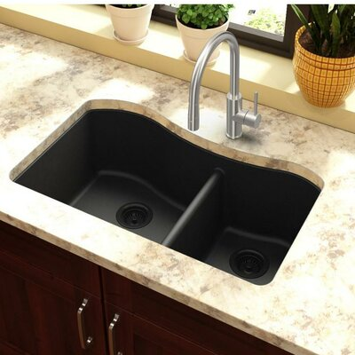 Classic 32.5 x 20 Double Bowl Kitchen Sink Finish: Black