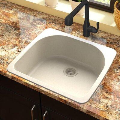 Quartz Classic 33 x 18.75 Drop-In Kitchen Sink Finish: Bisque