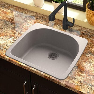 Quartz Classic 33 x 18.75 Drop-In Kitchen Sink Finish: Greige