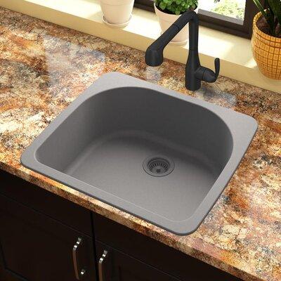 Quartz Classic 33 x 18.75 Drop-In Kitchen Sink Finish: Greystone