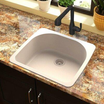 Quartz Classic 33 x 18.75 Drop-In Kitchen Sink Finish: Putty