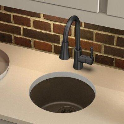Quartz Classic 18.13 x 18.13 Dual Mount Kitchen Sink Finish: Mocha