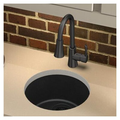 Quartz Classic 18.13 x 18.13 Dual Mount Kitchen Sink Finish: Black