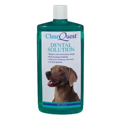 ClearQuest Pet Dental Solution - Size: 16 oz. at Sears.com