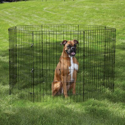 Easy Exercise Dog Pen Size: X- Small (18 H x 24 W)