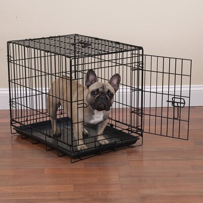 Pet Crate Size: Large (31 H x 42 W x 27 L)