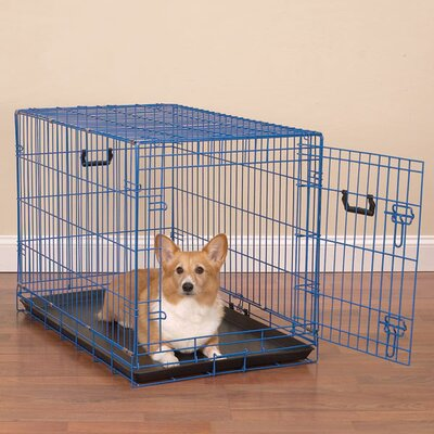 Colorful Wire Pet Crate Size: Medium (22.5 H x 30 W x 19 D), Color: Lime Twist