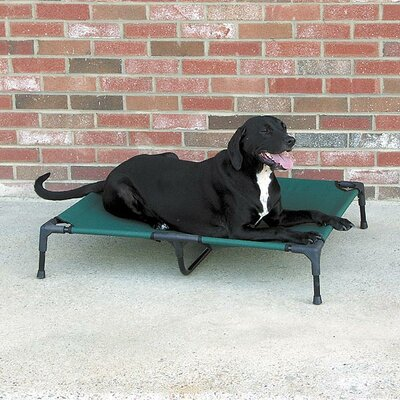 Dog Furniture Style Elevated Pet Cot Size: Large (30 W x 36 D)